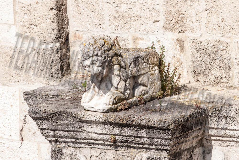 Duomo Cattedrale, Leone Facciata